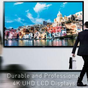Professional 4K Display